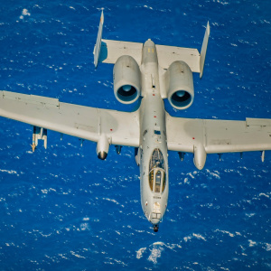 A-10 Thunderbolt II from the 442nd Fighter Wing.